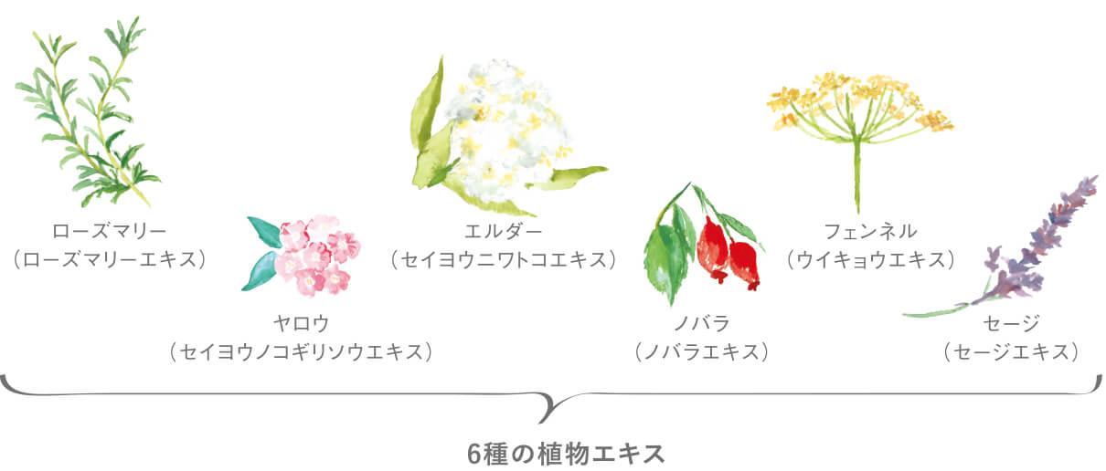 6種の植物エキス
