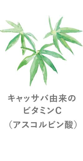 キャッサバ由来のビタミンC(アスコルピン酸)